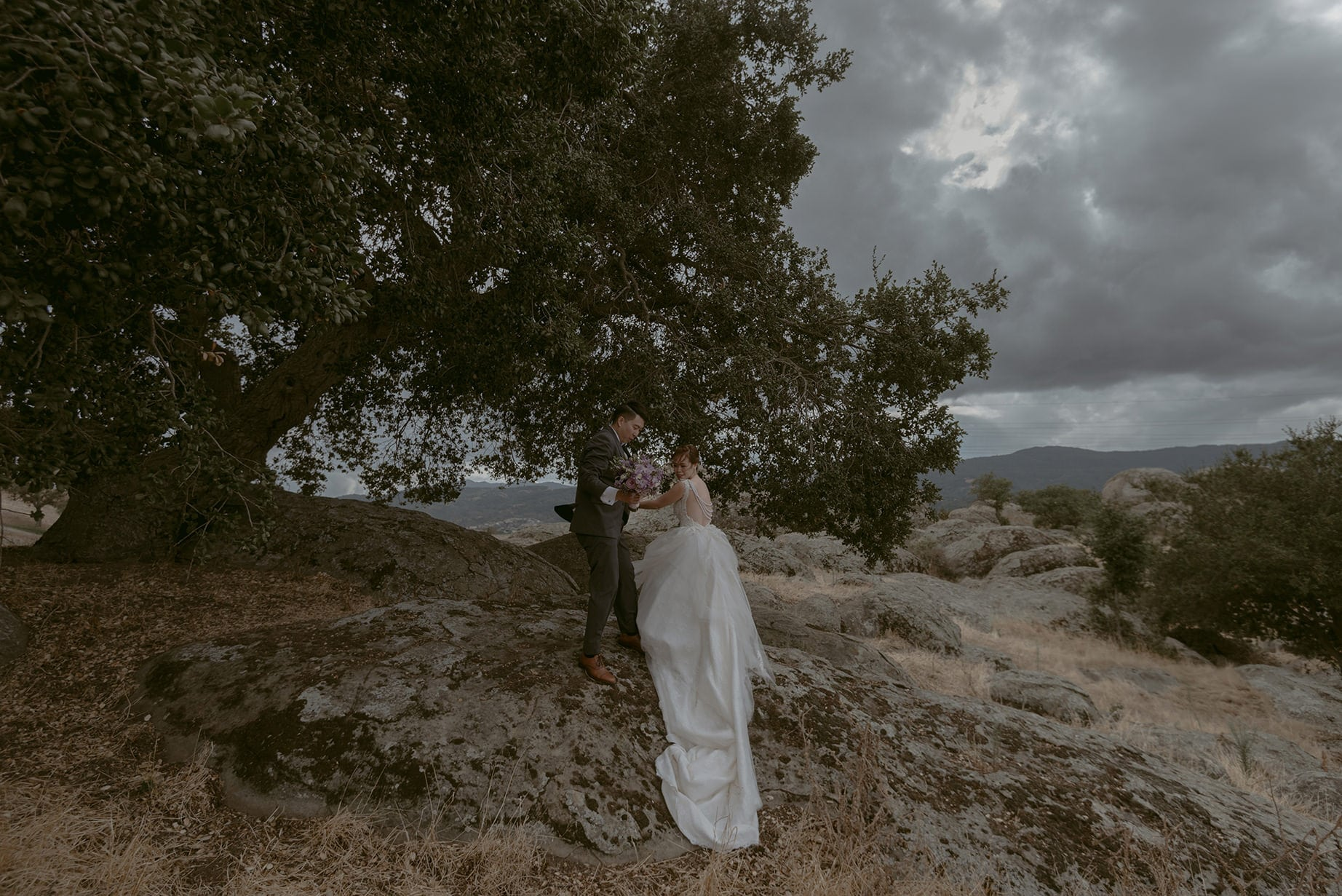 A Julie Pepin photo depicting a groom helping a bride with a long train up a rock on a cloudy day in front of a huge tree