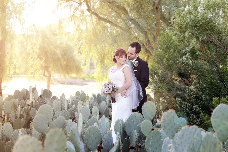 Bride and groom in a field of cacti