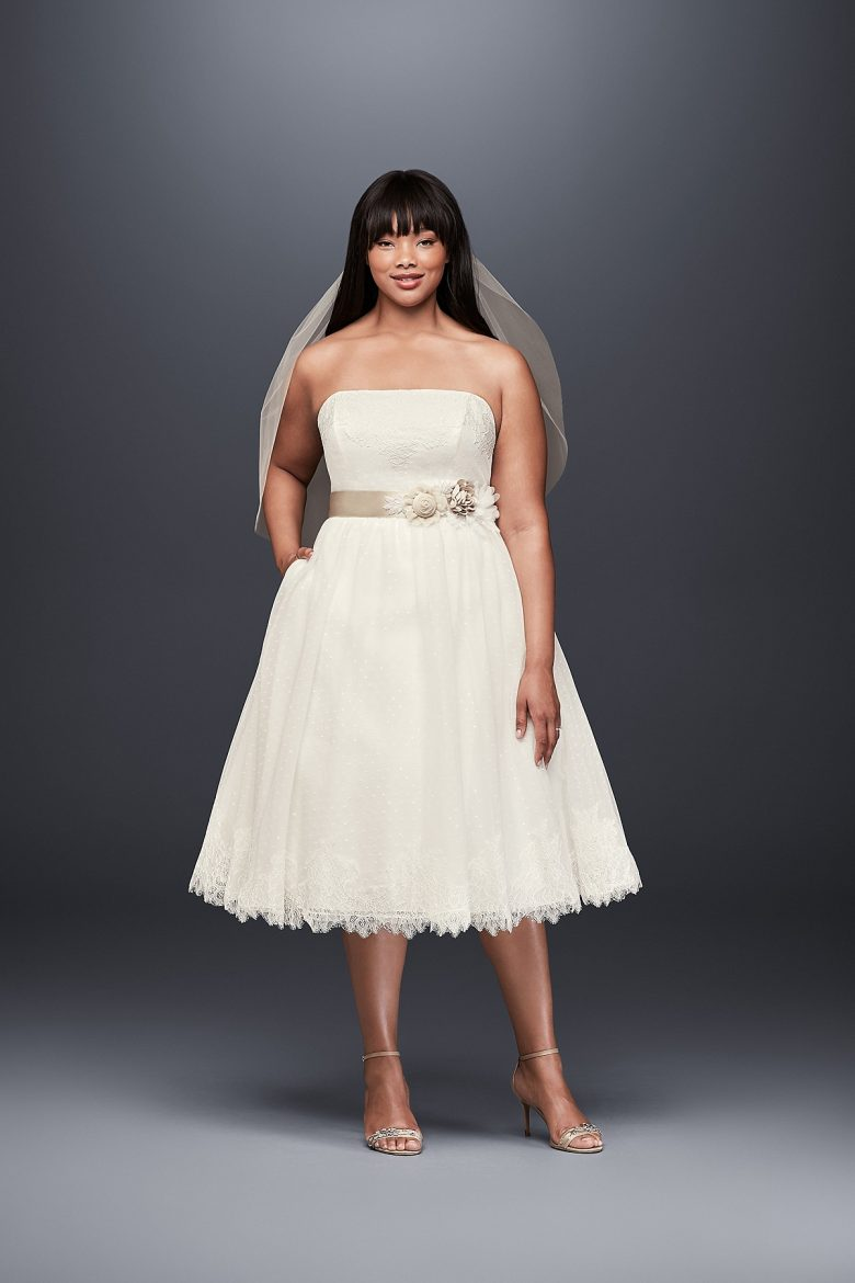 Dotted Tulle Plus Size Tea-Length Wedding Dress