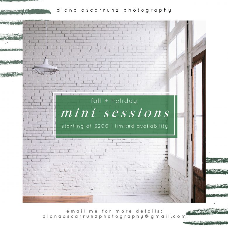 Graphic over white brick wall reads: Diana Ascarrunz Photography Fall + Holiday Mini Sessions Starting at $200 | Limited availability—email me for more details: dianaascarrunzphotography at gmail dot com
