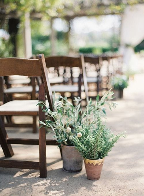 wedding ideas for aisle decor—potted plants adorn an aisle