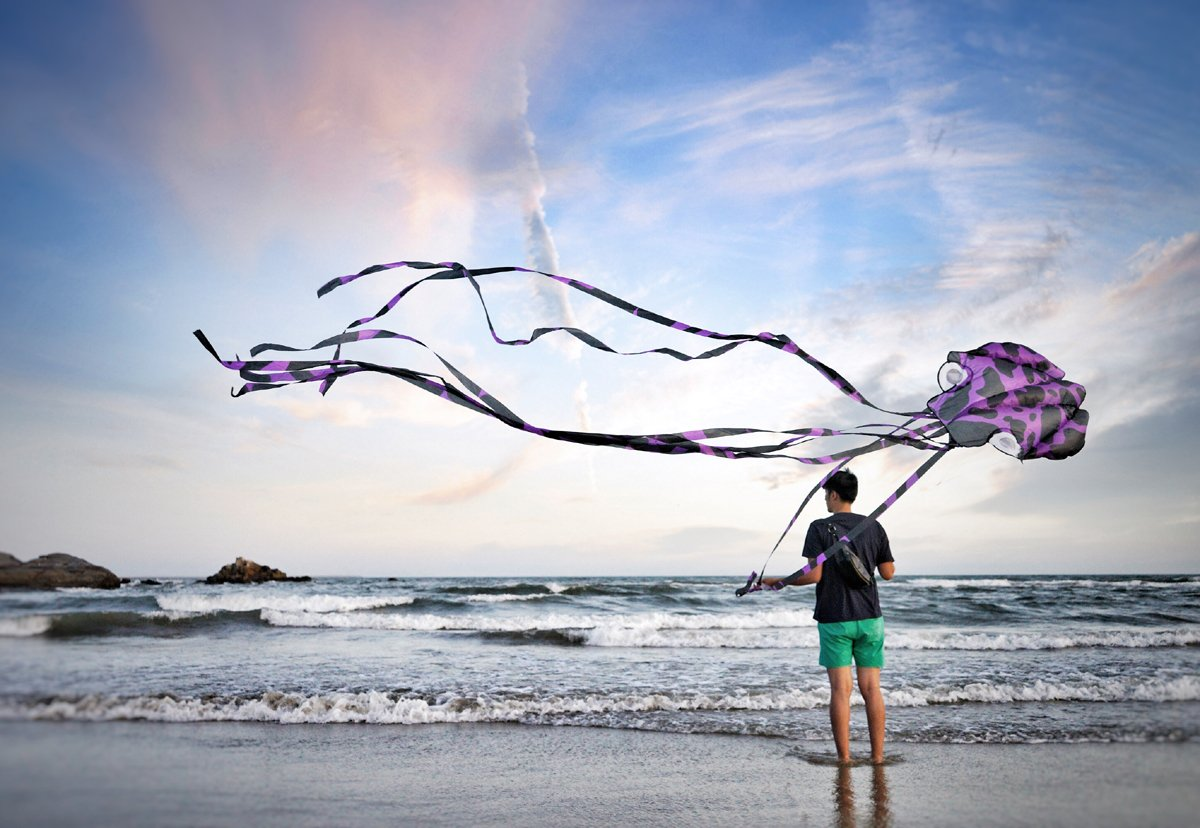 A person flies and octopus kite at the beach.