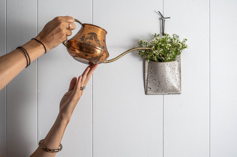 Hands pouring copper watering pot into small hanging plant